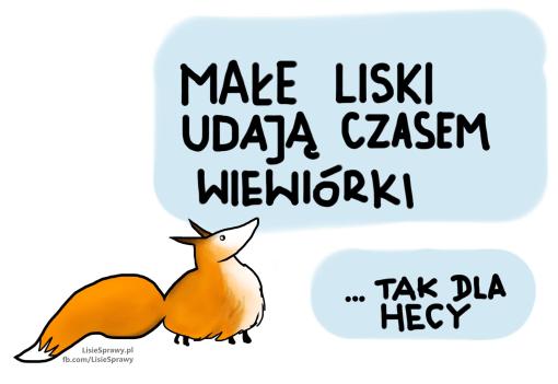 mały_lisek