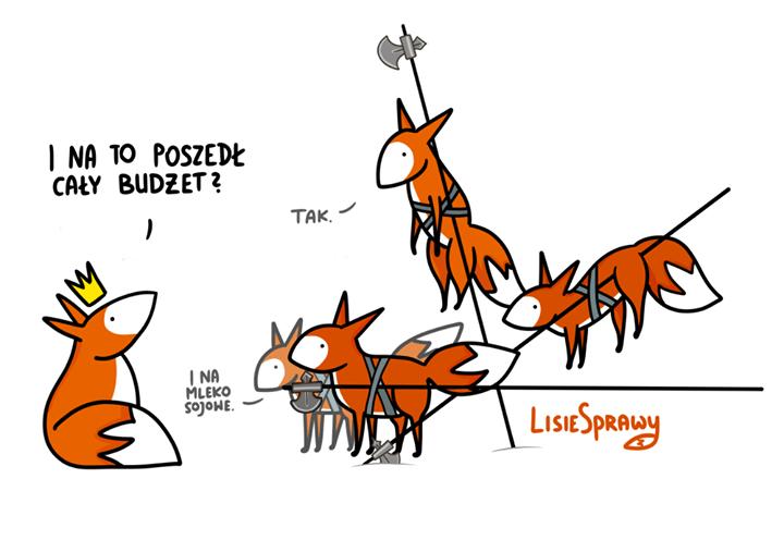 Nie ma to jak przepalić budżet na głupoty. Z drugiej mieć, a nie mieć…